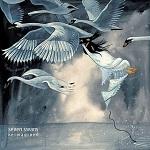 Seven Swans art work
