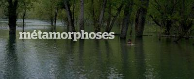Métamorphoses de Christophe Honoré